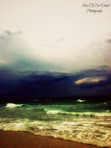 Florida Photography