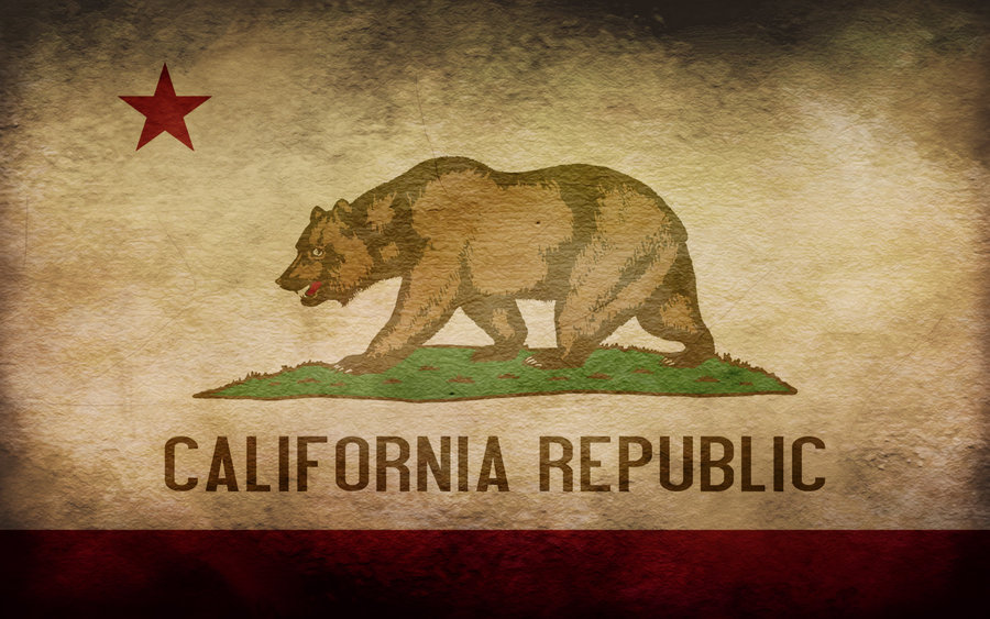An extreme anti-gay initiative may make the ballot in California